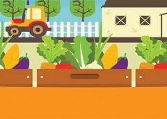 Tarladan sofraya: Topluluk destekli tarım